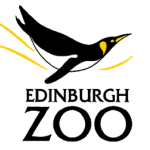 edinburgh zoo robin wood wildchild designs
