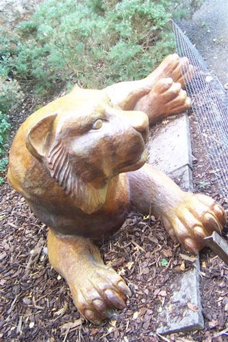 Tiger sculpture hand carved robin wood