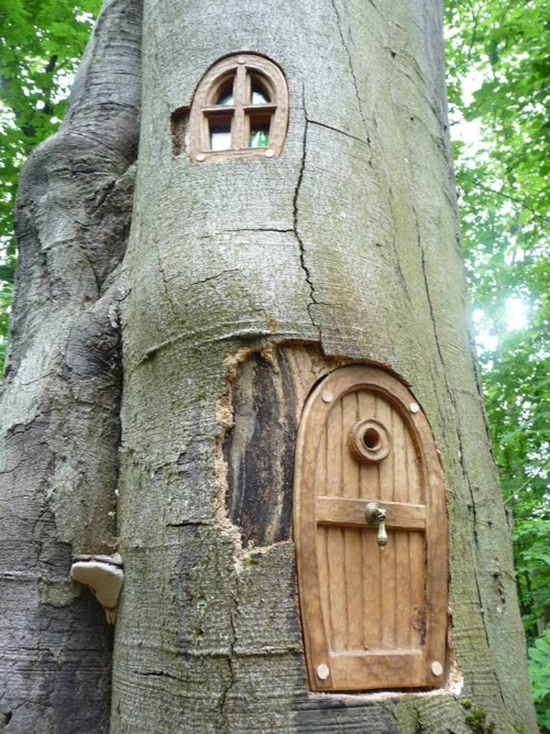 Adventure trail wood carving doors by Robin Wood