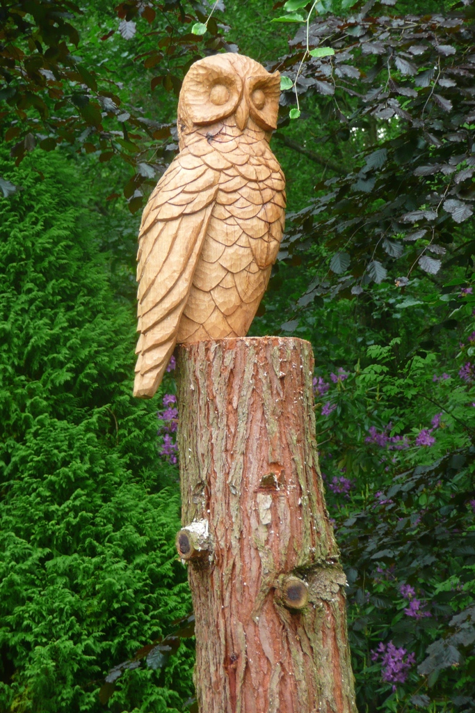 owl wood carving sculpture robin wood