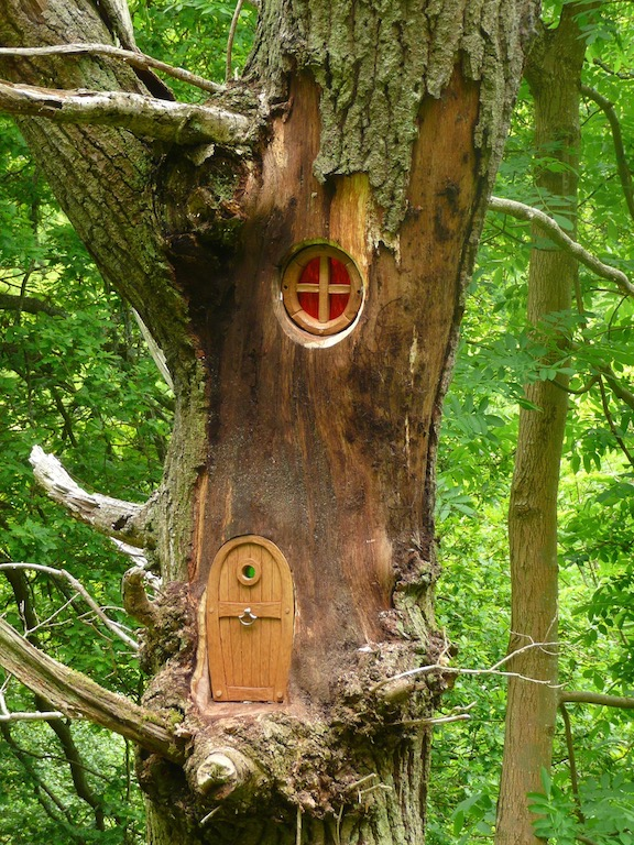 robin wood tree doors trail